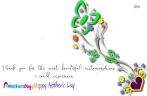 Happy Mothers Day Quotes In English   Thank You For The Most Beautiful Metamorphosis